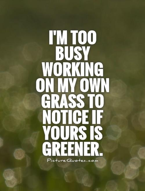I'm too busy working on my own grass to notice if yours is greener Picture Quote #1