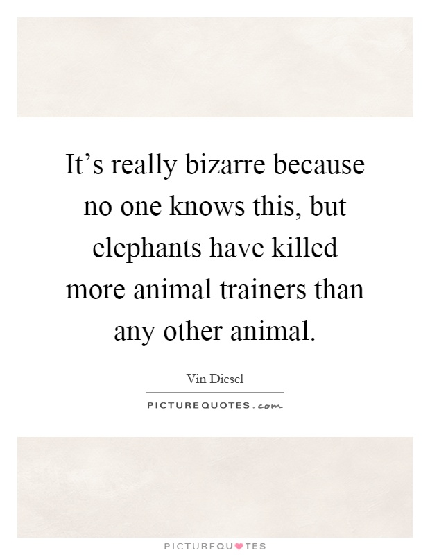 It's really bizarre because no one knows this, but elephants have killed more animal trainers than any other animal Picture Quote #1
