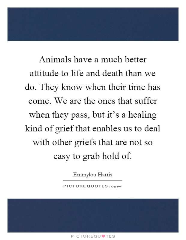 Animals have a much better attitude to life and death than we do. They know when their time has come. We are the ones that suffer when they pass, but it's a healing kind of grief that enables us to deal with other griefs that are not so easy to grab hold of Picture Quote #1