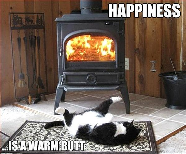 Happiness is a warm butt Picture Quote #1