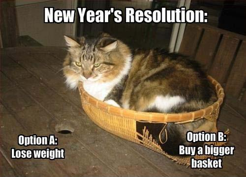 New Year's resolution. Option A: Lose weight. Option B: Buy a bigger basket Picture Quote #1
