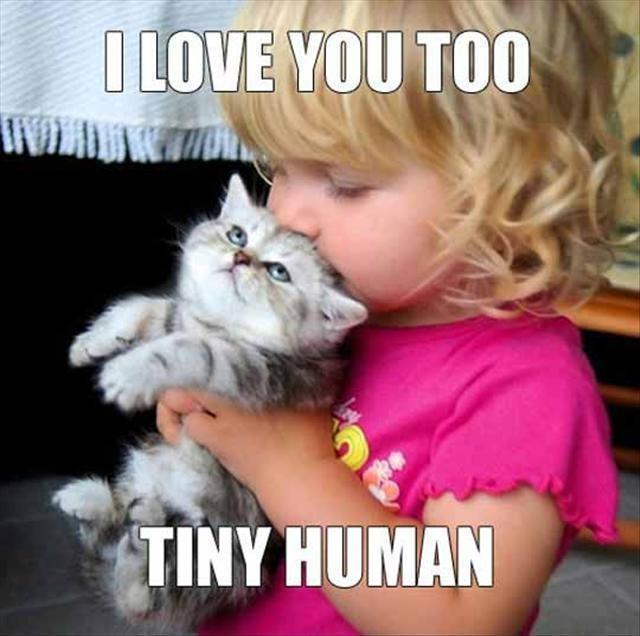 I love you too tiny human Picture Quote #1