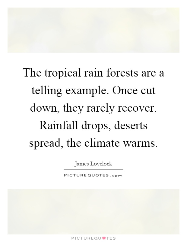 The tropical rain forests are a telling example. Once cut down, they rarely recover. Rainfall drops, deserts spread, the climate warms Picture Quote #1