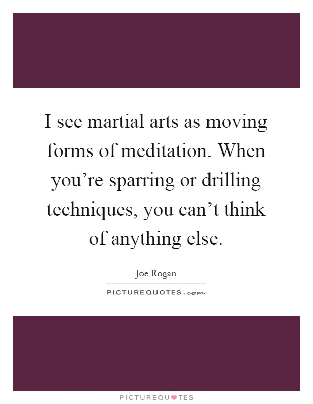 I see martial arts as moving forms of meditation. When you're sparring or drilling techniques, you can't think of anything else Picture Quote #1