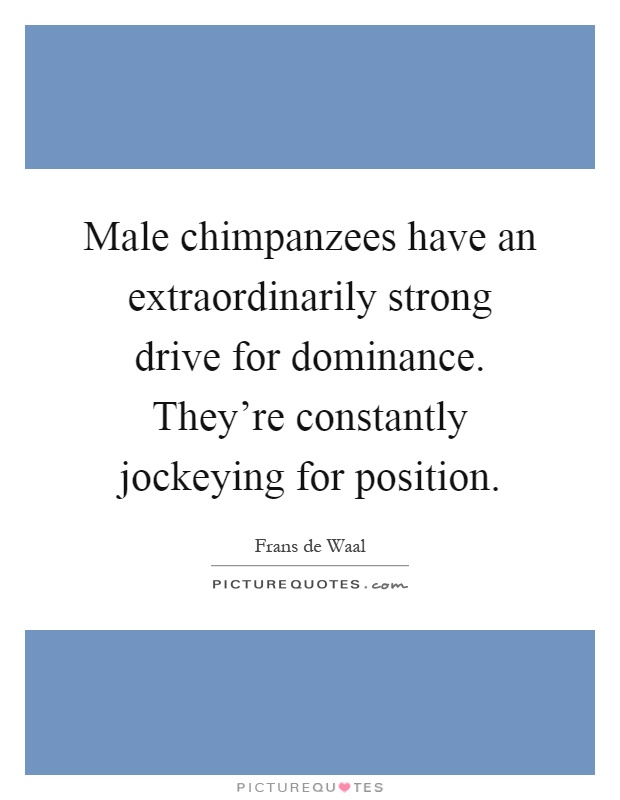 Male chimpanzees have an extraordinarily strong drive for dominance. They're constantly jockeying for position Picture Quote #1