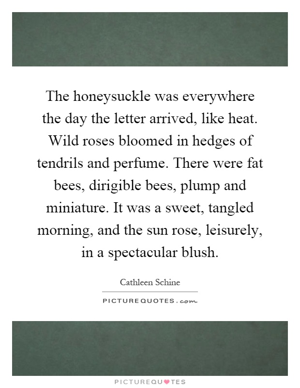 The honeysuckle was everywhere the day the letter arrived, like heat. Wild roses bloomed in hedges of tendrils and perfume. There were fat bees, dirigible bees, plump and miniature. It was a sweet, tangled morning, and the sun rose, leisurely, in a spectacular blush Picture Quote #1