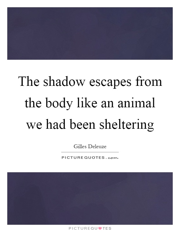 The shadow escapes from the body like an animal we had been sheltering Picture Quote #1