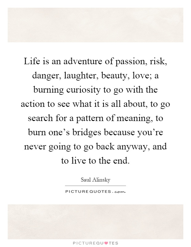 Adventure Love Quotes Custom Life Is An Adventure Of Passion Risk Danger Laughter Beauty