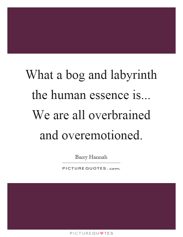 What a bog and labyrinth the human essence is... We are all overbrained and overemotioned Picture Quote #1