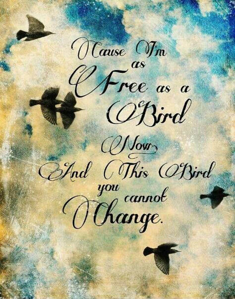 Cause I'm as free as a bird now, and this bird you cannot change Picture Quote #1