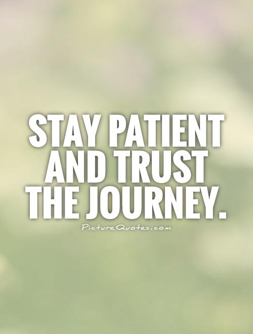 Stay patient and trust the journey Picture Quote #1
