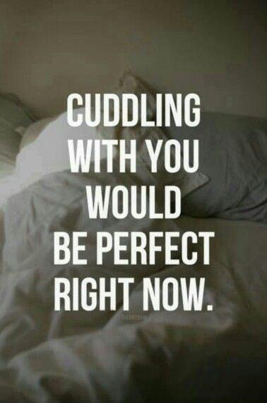 Cuddling with you would be perfect right now Picture Quote #1