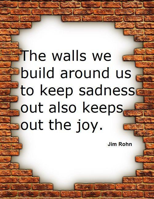 The walls we build around us to keep sadness out also keeps out the joy Picture Quote #1