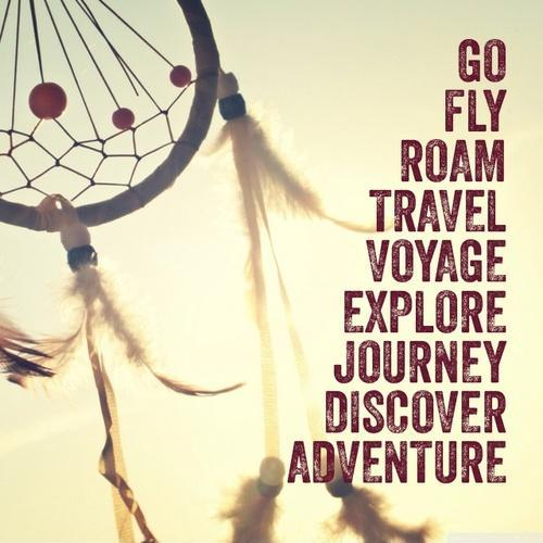 Go fly, roam, travel, voyage, explore, journey, discover, adventure Picture Quote #1