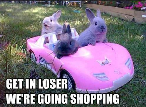 Get in loser. We're going shopping Picture Quote #1