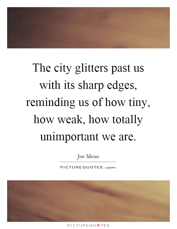 The city glitters past us with its sharp edges, reminding us of how tiny, how weak, how totally unimportant we are Picture Quote #1