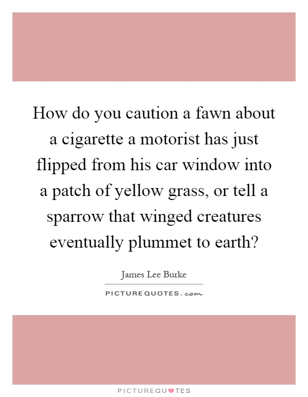 How do you caution a fawn about a cigarette a motorist has just flipped from his car window into a patch of yellow grass, or tell a sparrow that winged creatures eventually plummet to earth? Picture Quote #1