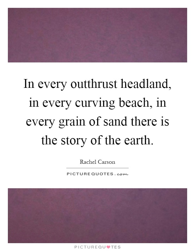 In every outthrust headland, in every curving beach, in every grain of sand there is the story of the earth Picture Quote #1