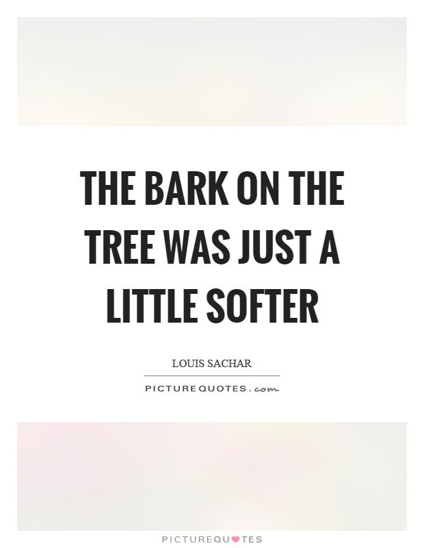 The bark on the tree was just a little softer Picture Quote #1