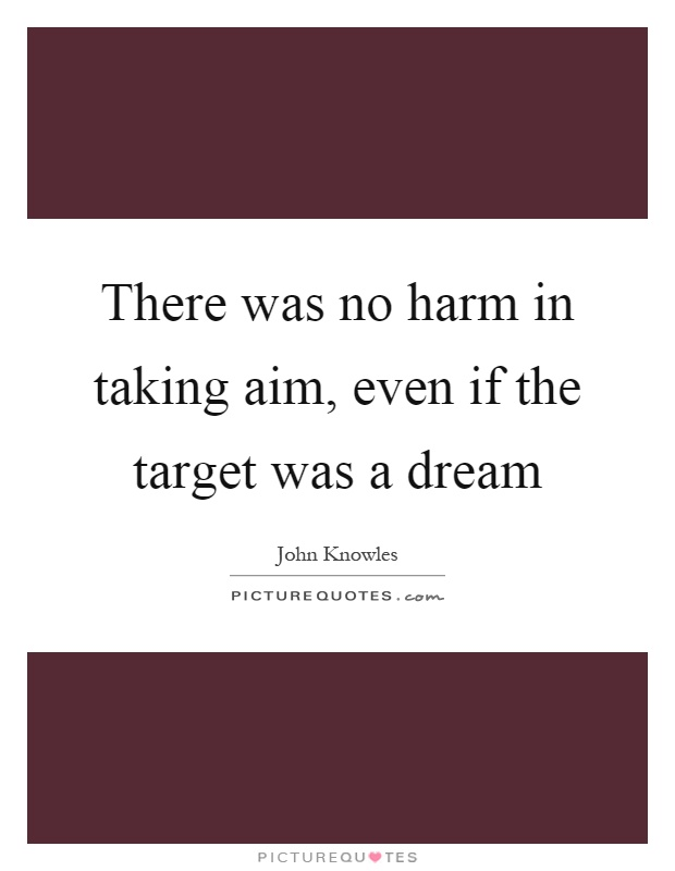 There was no harm in taking aim, even if the target was a dream Picture Quote #1