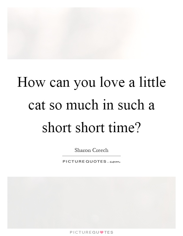 How can you love a little cat so much in such a short short time? Picture Quote #1