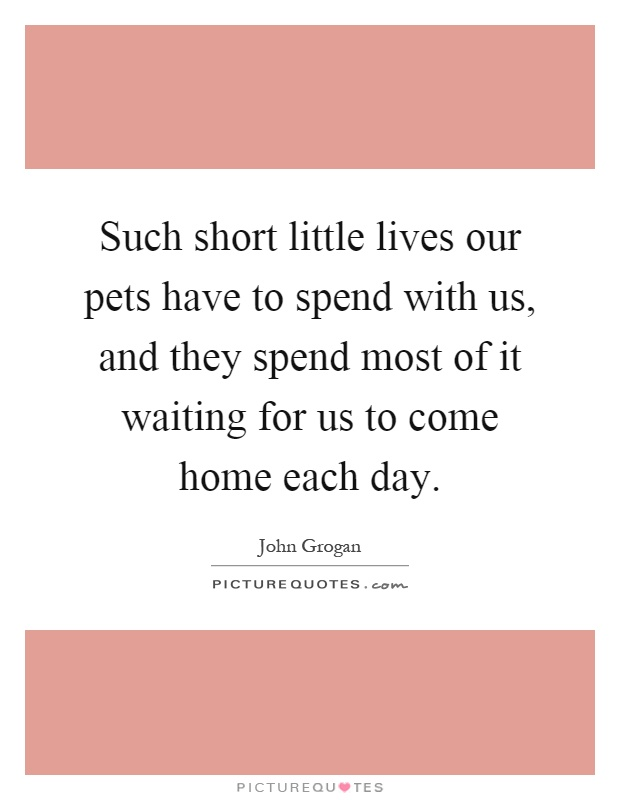 Such short little lives our pets have to spend with us, and they spend most of it waiting for us to come home each day Picture Quote #1