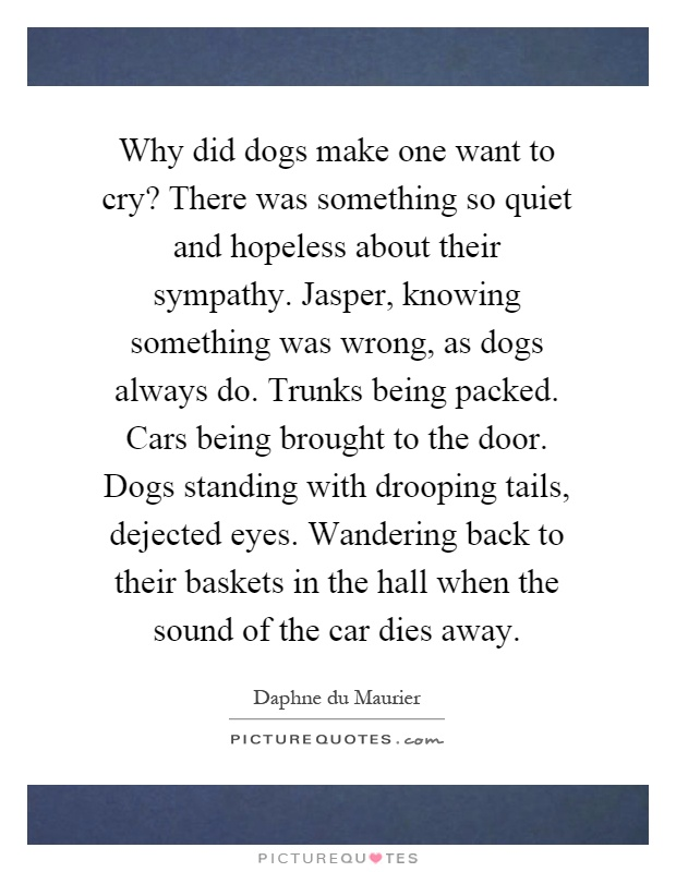 Why did dogs make one want to cry? There was something so quiet and hopeless about their sympathy. Jasper, knowing something was wrong, as dogs always do. Trunks being packed. Cars being brought to the door. Dogs standing with drooping tails, dejected eyes. Wandering back to their baskets in the hall when the sound of the car dies away Picture Quote #1