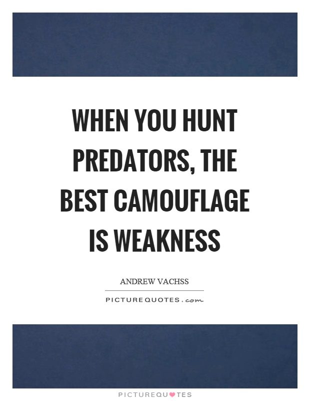 When you hunt predators, the best camouflage is weakness Picture Quote #1