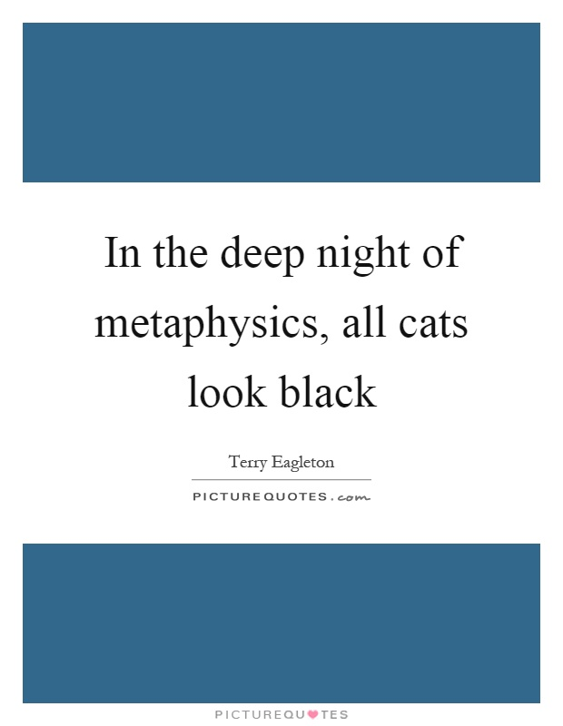 In the deep night of metaphysics, all cats look black Picture Quote #1