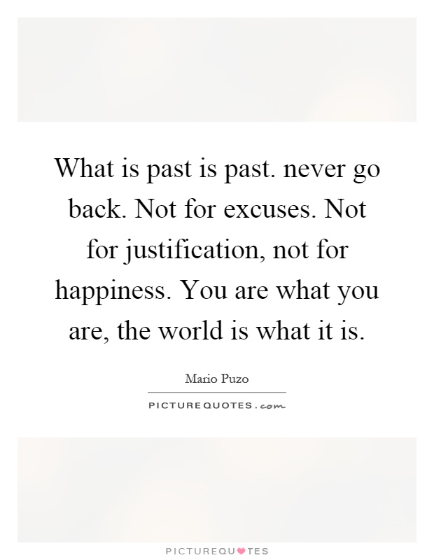 What is past is past. never go back. Not for excuses. Not for justification, not for happiness. You are what you are, the world is what it is Picture Quote #1