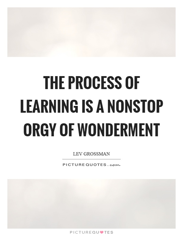 The process of learning is a nonstop orgy of wonderment Picture Quote #1