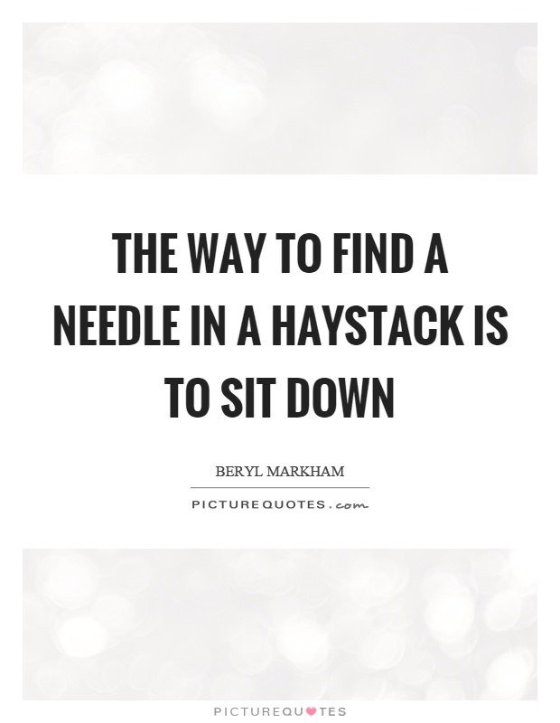 The way to find a needle in a haystack is to sit down Picture Quote #1