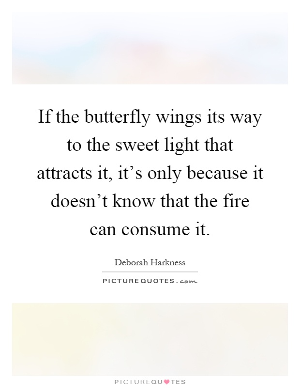If the butterfly wings its way to the sweet light that attracts it, it's only because it doesn't know that the fire can consume it Picture Quote #1