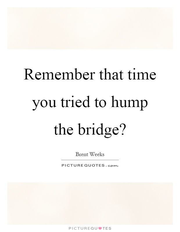 Remember that time you tried to hump the bridge? Picture Quote #1