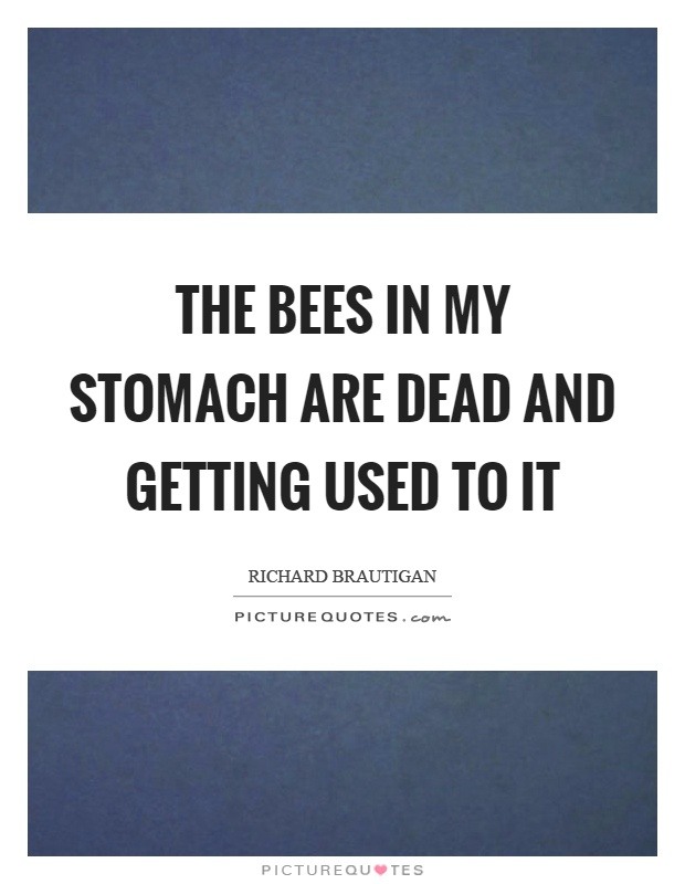 The bees in my stomach are dead and getting used to it Picture Quote #1