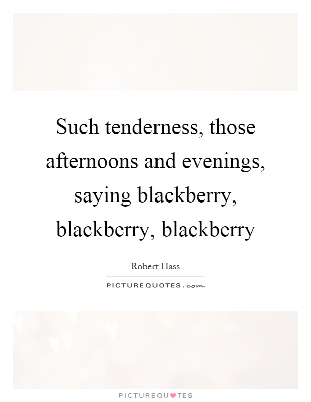 Such tenderness, those afternoons and evenings, saying blackberry, blackberry, blackberry Picture Quote #1