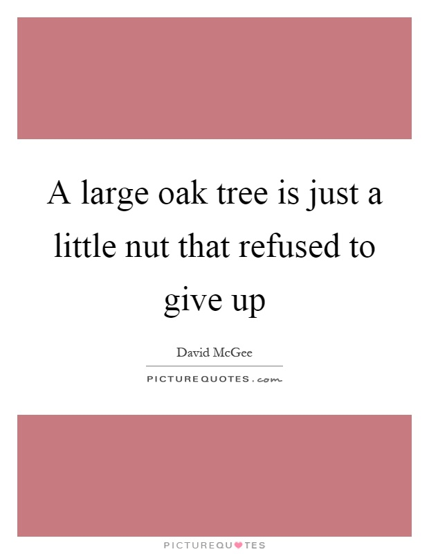 A large oak tree is just a little nut that refused to give up Picture Quote #1