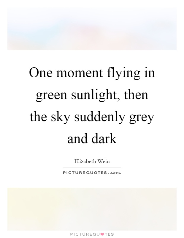 One moment flying in green sunlight, then the sky suddenly grey and dark Picture Quote #1