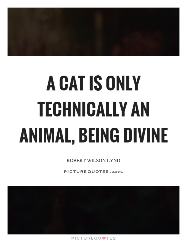 A cat is only technically an animal, being divine Picture Quote #1