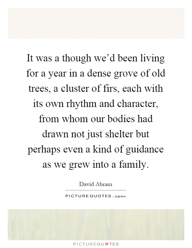 It was a though we'd been living for a year in a dense grove of old trees, a cluster of firs, each with its own rhythm and character, from whom our bodies had drawn not just shelter but perhaps even a kind of guidance as we grew into a family Picture Quote #1