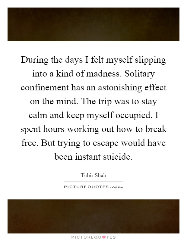 During the days I felt myself slipping into a kind of madness. Solitary confinement has an astonishing effect on the mind. The trip was to stay calm and keep myself occupied. I spent hours working out how to break free. But trying to escape would have been instant suicide Picture Quote #1