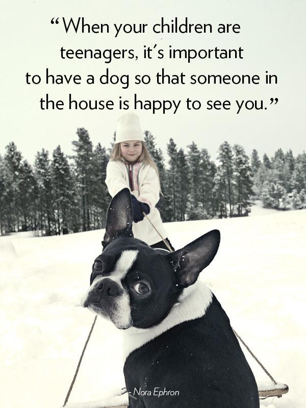 When your children are teenagers, it's important to have a dog so that someone in the house is happy to see you Picture Quote #1