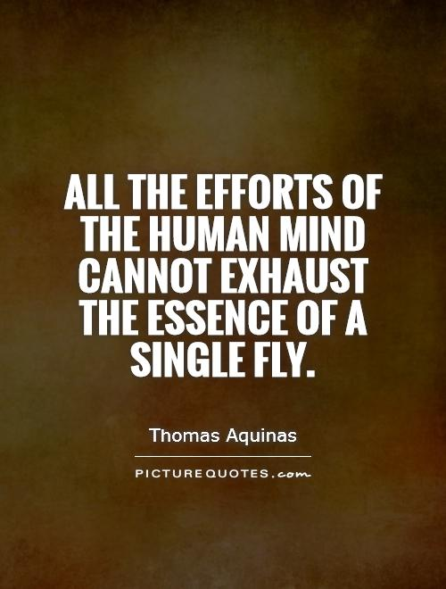 All the efforts of the human mind cannot exhaust the essence of a single fly Picture Quote #1