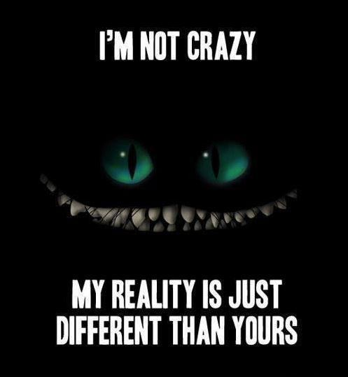 I'm not crazy. My reality is just different than yours Picture Quote #1