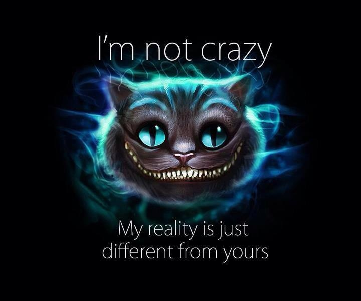 I'm not crazy. My reality is just different than yours Picture Quote #3