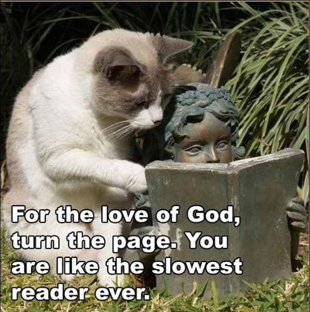 For the love of God, turn the page. You are like the slowest reader ever Picture Quote #1