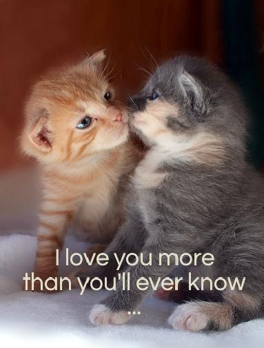 I love you more than you'll ever know Picture Quote #1