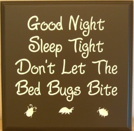 Good Night Sleep Tight Dont Let The Bed Bugs Bite Picture Quote