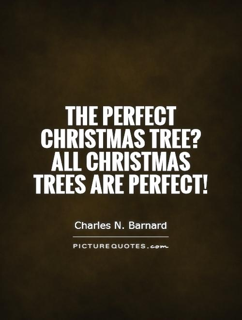The Perfect Christmas Tree? All Christmas Trees Are Perfect!
