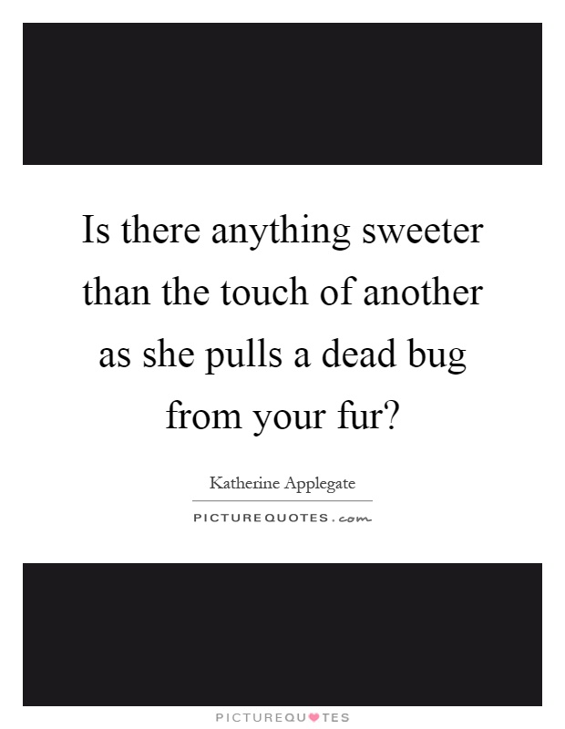 Is there anything sweeter than the touch of another as she pulls a dead bug from your fur? Picture Quote #1